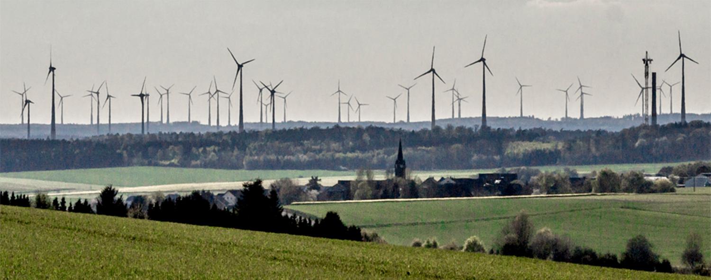 Windenergie versus natuurbescherming